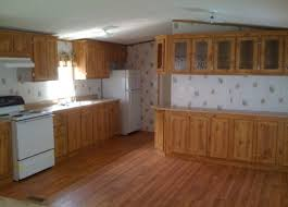 cabinet kitchen cabinet cleaner and polish stunning mobile home