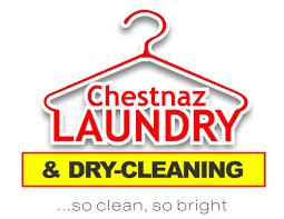 laundry business plan format logo design business plan sle plans chestnaz laundry designs