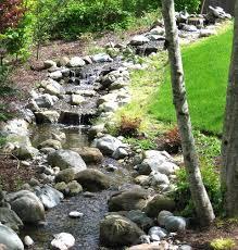 backyard stream aqualifeponds