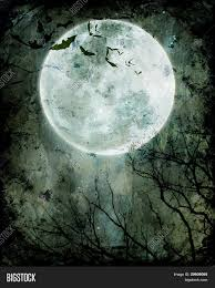 halloween background bats halloween background bats flying in the night with a full moon in
