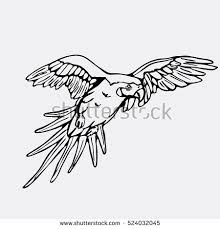 parrot flying stock images royalty free images u0026 vectors