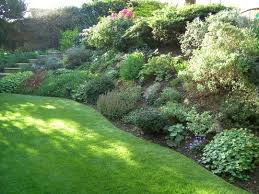 Backyard Hillside Landscaping Ideas 12 Best Backyard Images On Pinterest Landscaping Ideas Backyard