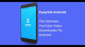 download youtube video with subtitles online how to download youtube videos for free online video downloader