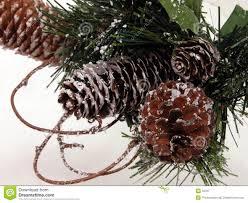 seasonal pine cone artificial snow royalty