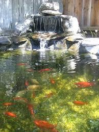 Backyard Waterfall Ideas Waterfalls And Ponds U2013 Senalka Com