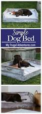 Home Design Story Dog Bone by Best 25 Dog Beds Ideas On Pinterest Dog Bed Dog Sleeping In