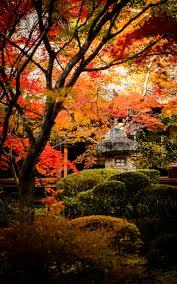 october backgrounds for the desktop jeffrey friedl u0027s blog more japanese garden desktop backgrounds