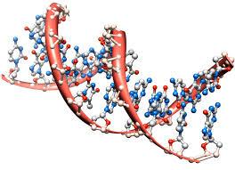 dissertation topics in biotechnology biotechnology rand dna molecule