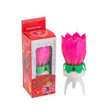 lotus birthday candle musical birthday candle manufacturers suppliers of sangit