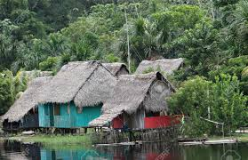 a group indigenous houses in amazon river basin near