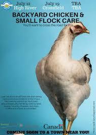 ab farm animal care on twitter