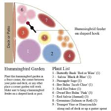 garden inspiration hummingbird garden plans plans cool design 6 on