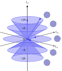 L Form K He Kaufen Angular Momentum Operator Wikipedia
