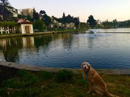 Lake Merritt Map Lake Merritt Hikes Dogs Love Hikes Dogs Love