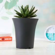 lawn garden modern planter and black garden pots round erineum