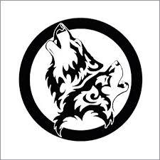 circle c australian shepherds bravete wolf team youtube