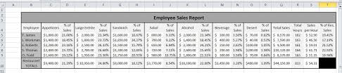 Monthly Sales Report Template Excel Server Sales Performance Report And Analysis Microsoft Excel 2010