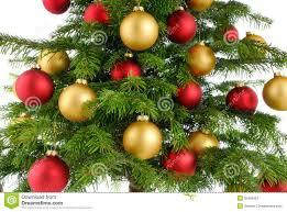 tree closeup stock image image of shiny merry 35486681