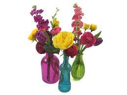 Bud Vase Wholesale 19 Flower Vase Wholesale Gleditsia Triacanthos Inermis