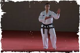 juche pattern video dragonsspirit black belt pattern videos
