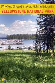 why you should stay at fishing bridge in yellowstone yellowstone