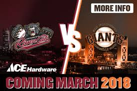 ace hardware annual report ace hardware exhibition game giveaway sacramento river cats tickets