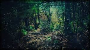 Deep Forest Green Deep Green Forest Pathway Youtube