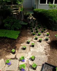 Backyard Ground Cover Options 22 Best Ground Cover Plants Images On Pinterest Gardening