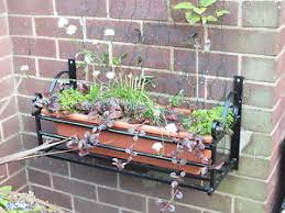 Wrought Iron Wall Planters by Wrought Iron Planter Pots Window Boxes Baskets Ebay