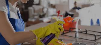 Upholstery Minneapolis Mn Cleaning Services In Minneapolis Upholstery Cleaning In