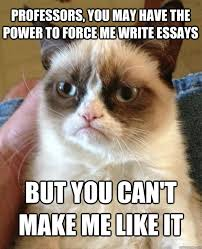 Cats Resume Gre Essay Practice Argumentative Essay On College Tuition Causes