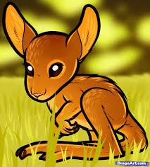 how to draw a baby kangaroo baby kangaroo step by step desert