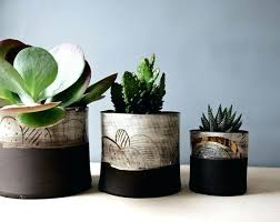 indoor plant pots online nz indoor plant pots ideas plants in