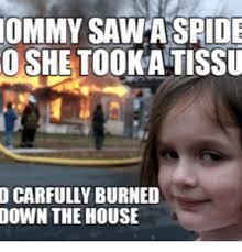 I Saw A Spider Meme - afraid of spiders burn house meme of best of the funny meme