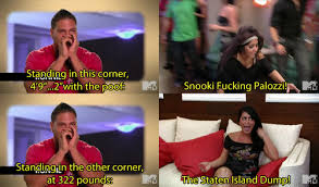 Snooki Memes - 24 reasons jersey shore was god s gift to humanity