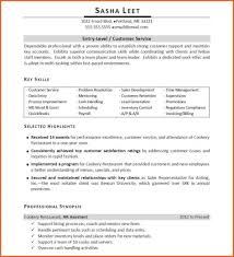 Inventory Skills Resume Advanced Computer Skills Resume Resume For Your Job Application
