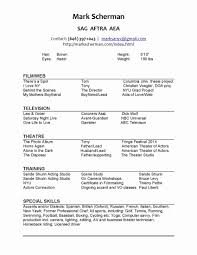 resume copy and paste template how to copy and paste resumes paso evolist co