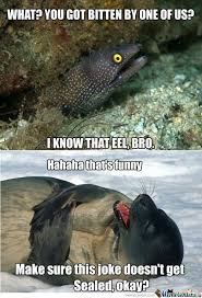 Eel Meme - moray eel memes best collection of funny moray eel pictures