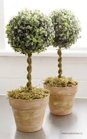 topiary trees diy topiary trees from dollar store supplies topiary trees