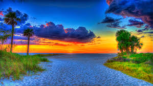 Florida scenery images Pictures florida usa beach hdr nature sky sand palms sunrises and jpg
