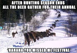 Hog Hunting Memes - funny hunting meme after hunting season ends picture