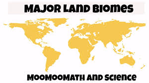 World Map Biomes by Major Biomes Of The World For Kids Youtube