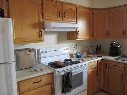 how can i make my oak kitchen cabinets look modern i need advice to update my generic oak kitchen