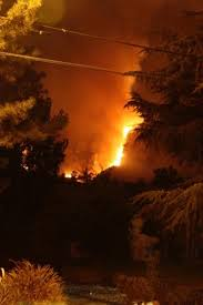 Type 1 Wildfire Definition by Wildfire Disasters And Nursing Nursing Clinics