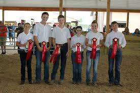 Hearst Sweepstakes Junior Livestock Association Sweepstakes Contest Huron Daily Tribune
