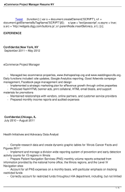 asset management experience resume consulting it resume the