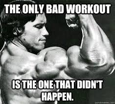 Arnold Gym Memes - mintschoko protein eiscreme recipe motivation