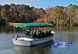 South Carolina wildlife tours images Hilton head alligator tour see the alligators of hilton head up close jpg