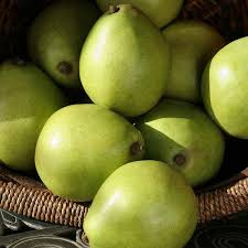 gourmet pears premium fruit gifts and boxes the fruit company