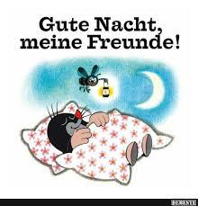 gute nacht sprüche gute nacht lustige bilder sprüche witze echt lustig